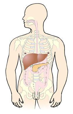 tumor i bugspytkirtlen